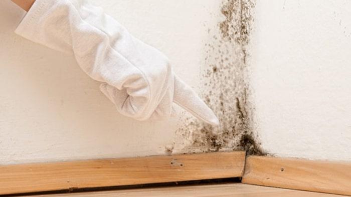 Cách tẩy mực trên tường sơn