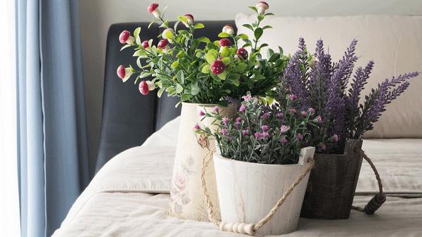 Cách làm thơm phòng ngủ- cây hương liệu